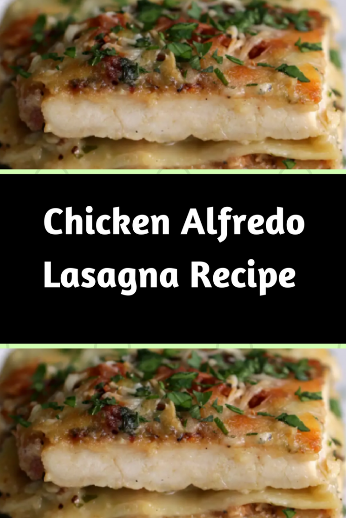 This Chicken Alfredo Lasagna Is Making My Mouth Water